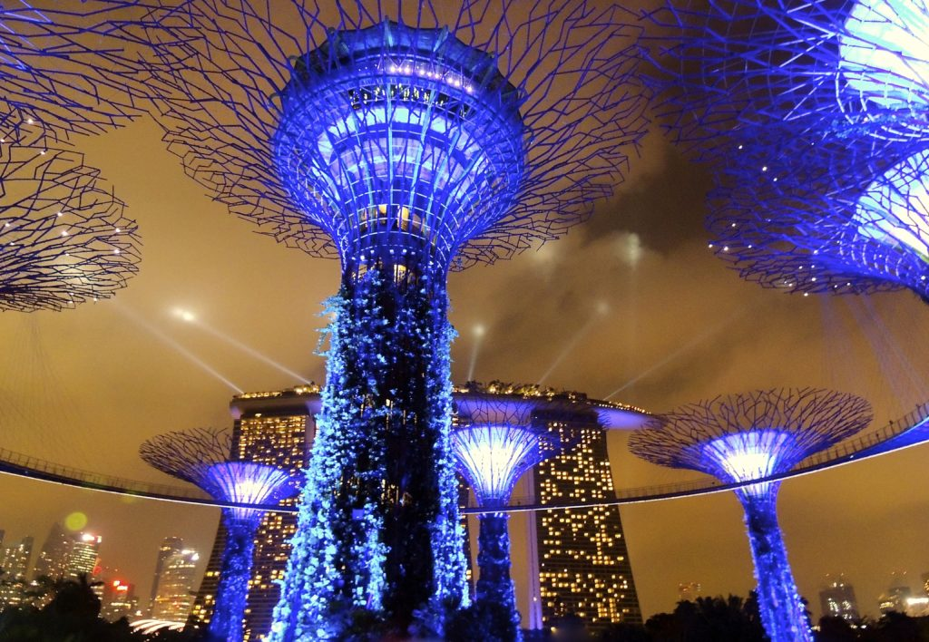 Gardens by the Bay Super Tree Grove